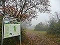 Naturschutzgebiet Vorderer Berg - panoramio.jpg