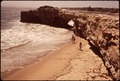 Near Santa Cruz - Natural Bridges Beach - NARA - 543418.tif