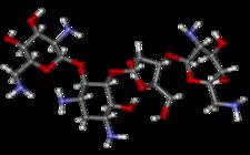 prostorová molekula neomycinu