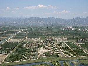 Neretva Delta - The delta has been largely cultivated for agriculture.