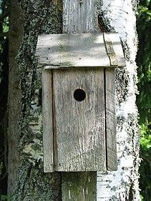 Casas De Madera Para Jardin #1: 220px-Nest_box_20050717_001.jpg