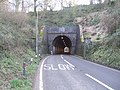 North portal of Horn Hill tunnel - geograph.org.uk - 709458.jpg