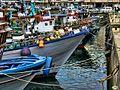 O Grove-Colores en el puerto (8099336563).jpg