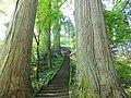 Oguni, Tsuruoka, Yamagata Prefecture 999-7316, Japan - panoramio (2).jpg