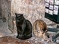 Old Town, Split (P1080879).jpg