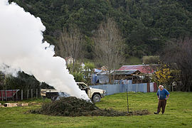 Old man burning leaves in a farm, New Zealand - 0025.jpg
