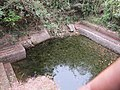Old pond ruins from North Kerala (7).jpg