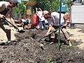 Orchard Planting.jpg