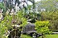 Orchid Garden Bali Indonesia - panoramio (10).jpg