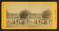Ossipee Mountains, from Center Harbor, N.H, by Pease, N. W. (Nathan W.), 1836-1918.png