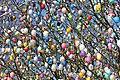 Ostereierbaum, mit 10.000 Eiern geschmückt IMG 9103WI.jpg