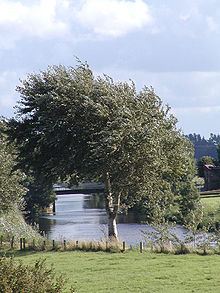 Otterndorf am hadeler kanal 01.jpg