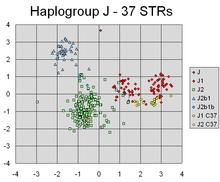 PCA of Haplogroup J using 37 STRs.png