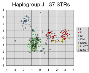 Principal component analysis - A principal components analysis scatterplot of Y-STR haplotypes calculated from repeat-count values for 37 Y-chromosomal STR markers from 354 individuals.   PCA has successfully found linear combinations of the different markers, that separate out different clusters corresponding to different lines of individuals' Y-chromosomal genetic descent.