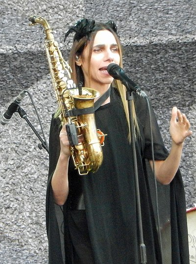 Picture of a band or musician: Pj Harvey
