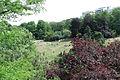 Parc des Buttes-Chaumont, pelouse autorisée 02.jpg