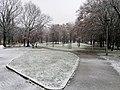 Parco Parri con neve - Vigevano.jpg