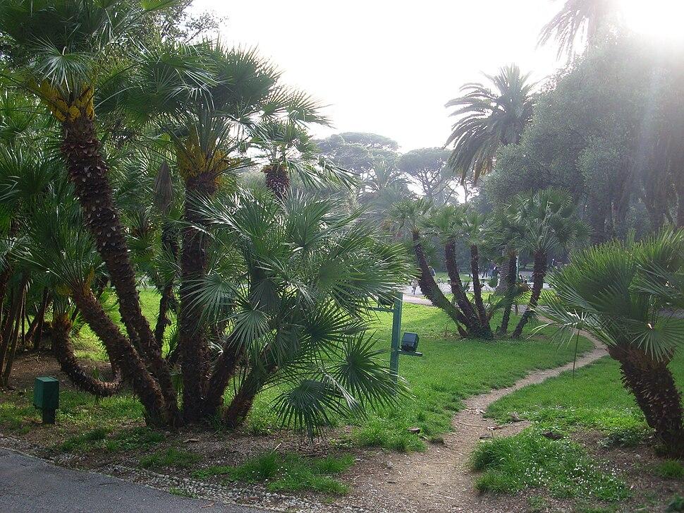 Parco di Nervi Genova 01