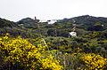 Parque Natural de s'Albufera des Grau (2).JPG
