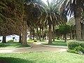 Parque Ross Pichilemu.jpg