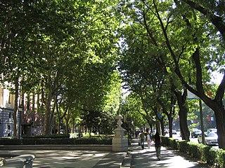 Paseo del Prado cultural property in Madrid Distritos: Centro y Retiro, Spain