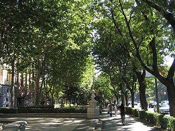 Paseo del Prado %28Madrid%29 02