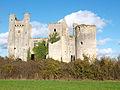 Passy-les-Tours-FR-58-château-02.jpg