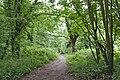 Path to Otters Tunnel, Dibbinsdale LNR.jpg