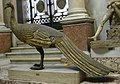 Pavoni, da monumento a adriano a castel sant'angelo, inv. 5120.JPG