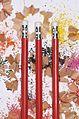 Pencil Lab (3223211591).jpg