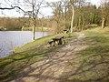 Picnic tables beside Rowley Lake - geograph.org.uk - 1226452.jpg