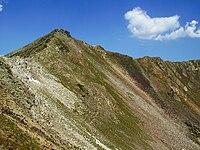 Pico Tres Provincias (Cardaño de Arriba).jpg