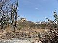 Picote - PB - Brasil - panoramio.jpg