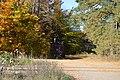 Piercefield, NY, USA - panoramio (47).jpg