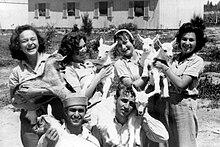 Que son los kibbutz yahoo dating 5