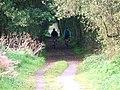 Pinchinthorp Cycleway - geograph.org.uk - 57606.jpg