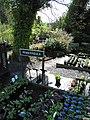 Plants at the Dingle Nurseries - geograph.org.uk - 1274779.jpg