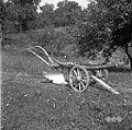 Plug, ki ga danes uporabljajo, Brlog 1956.jpg