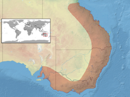 Pogona barbata distribution.png