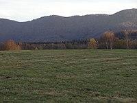 Poledník (864 m, bývalá NPR) od Dvořákova (2).JPG
