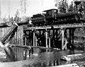 Polson Brothers Logging Co railroad and crew unloading logs at log dump, Washington, ca 1903 (INDOCC 272).jpg