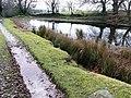 Pond at Rhyswg-ganol - geograph.org.uk - 653103.jpg