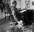 President Ford and his golden retriever Liberty - NARA - 6829597 (cropped1).jpg