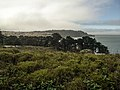 Presidio San Francisco (17304627059).jpg