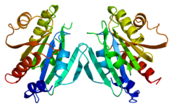 Protein ARF3 PDB 1hur.png