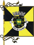 Flag of Vale de Cambra