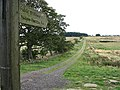 Public bridleway at Needless Hall Moor - geograph.org.uk - 547498.jpg