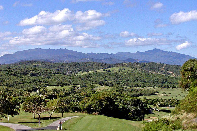 File:Puerto Rico El Yunque 3.jpg