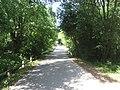 Punia, Lithuania - panoramio (17).jpg