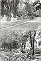 Quittapahilla (1917) (14740987166).jpg